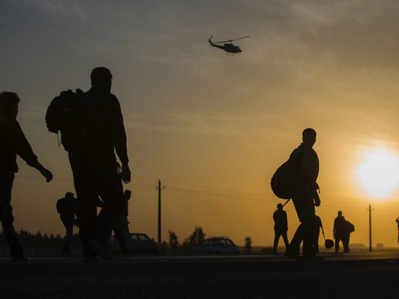 crowd walking at sunset